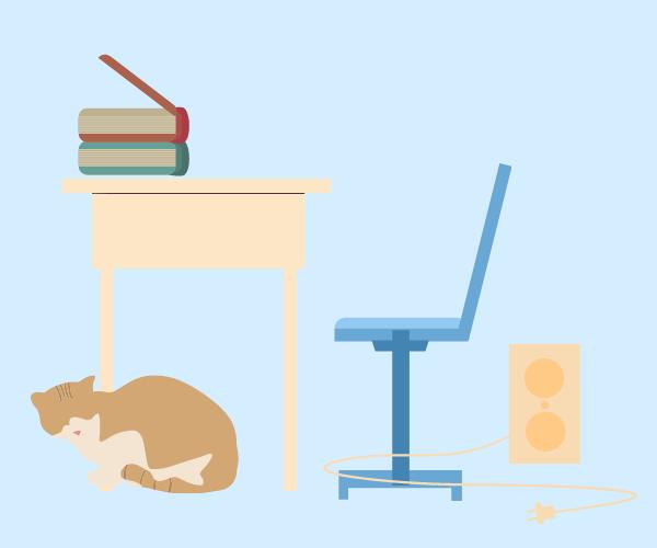 机といすと猫