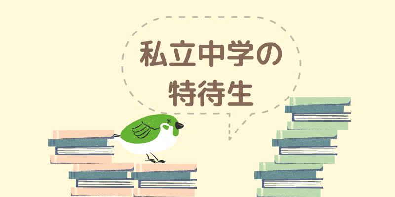 鳥と本がたくさん