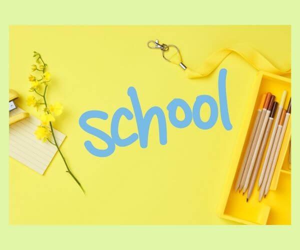 黄色い花と鉛筆数本